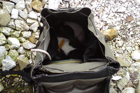 Im Rucksack